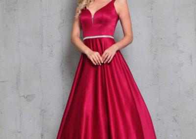 Swan-rouge-9754